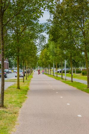 traffic road in amsterdam, netherlands
