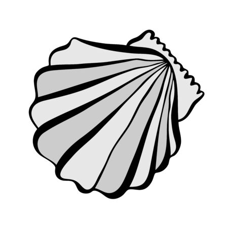 Vector black and white illustration with seashells. Illustration