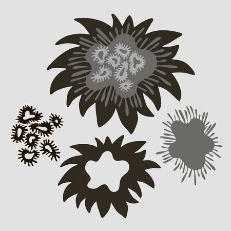 Set of isolated designs with abstract black and white floral forms. Ilustracja