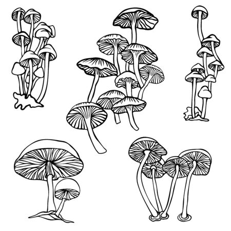 Isolated vector design set of lined mushrooms on white background. The design is perfectly suitable for clothes design, children decoration, stickers, stationary, tattoos. Vettoriali