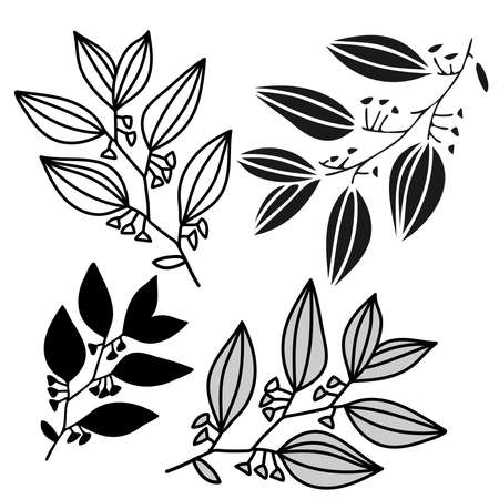 Isolated black and white vector design of tropical leaves, lined, silhouette Illustration