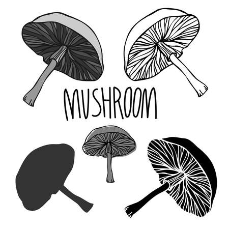 Vector isolated black and white design of abstract mushroom lined and silhouette Illustration