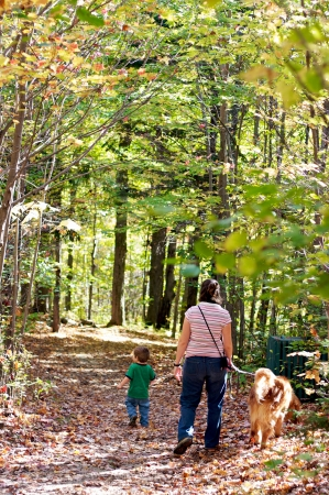Happy family walking in a forest with their dog in autumn photo