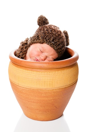 Newborn baby boy resting in a flowerpot with a knit hat photo