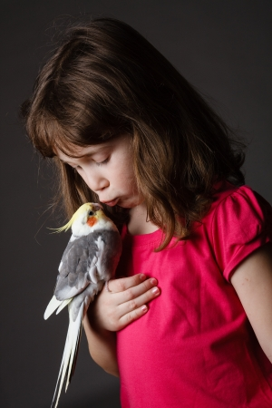 Cute little girl with a pet cockatiel in her hand photo