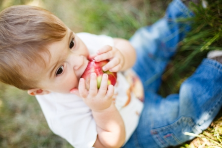 Baby boy eating an apple in an apple orchard photo