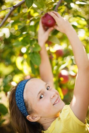 Girl picking an apple in an apple-tree photo
