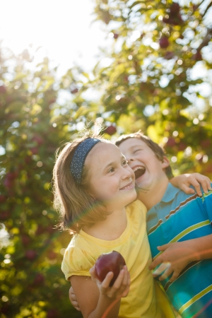 Brother and sister laughing and eating apples in an orchard