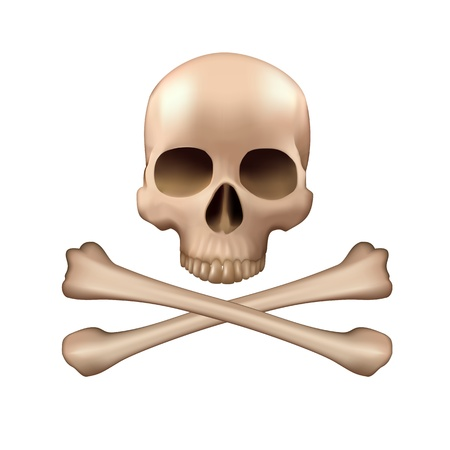 Realistic vector skull and bones Stock Vector - 19541154