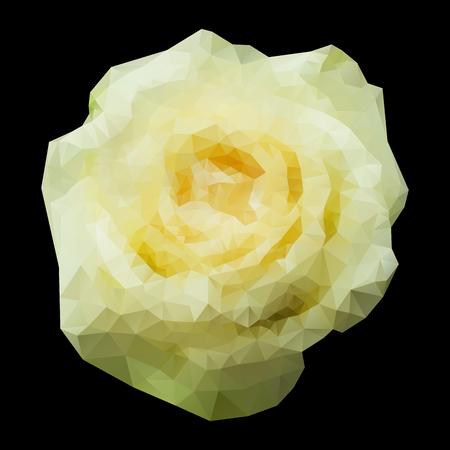 rose blanche: R�sum� g�om�trique polygonale rose blanche pour votre conception. Illustration