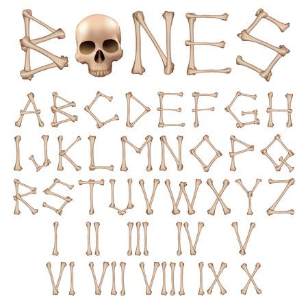 Bones Alphabet and numbers vector