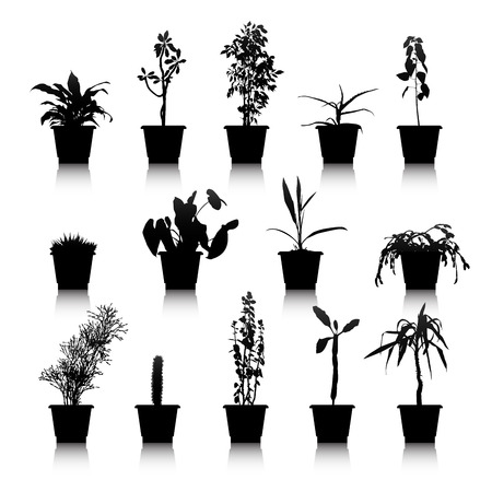 Set of silhouettes house plants in pots Vector