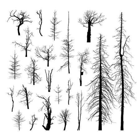 arboles secos: Establecer las siluetas de los árboles muertos. Aislado Conjunto de vectores de siluetas detalladas de los árboles sin hojas sobre un fondo blanco