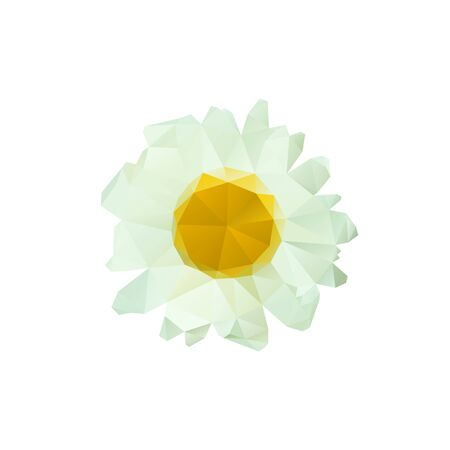 Polygon chamomile bud on a white background. Vector art.