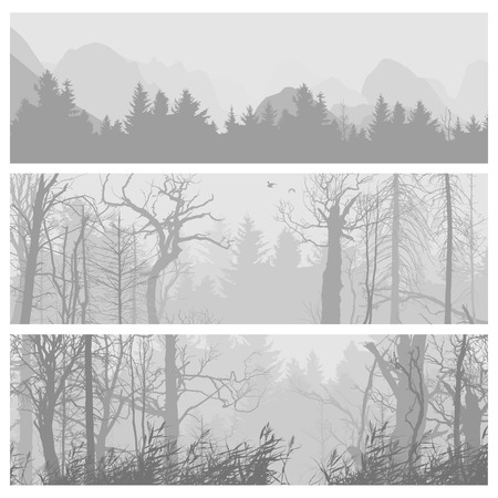 wild nature wood: Wild forest background. Wild forest horizontal banners. Forest design template. landscape nature, wood natural panorama. Outdoor camping design template. Journey banner collection. Vector illustration