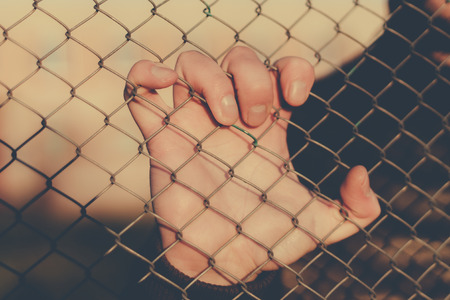 mesh fence: Hand holds a mesh fence. Outdoors photo.