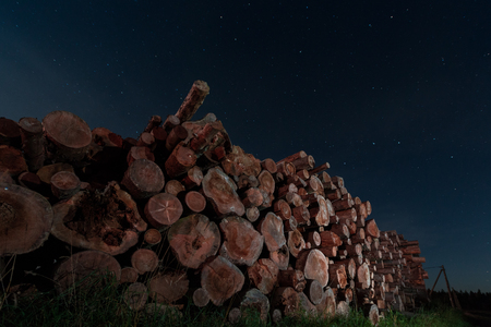 lumbering: logs stacked in a heap on the background of night sky