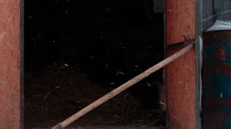 Backed shovel barn door and falling snow