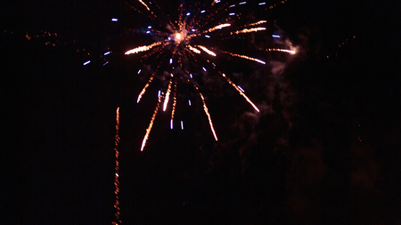 next year: fireworks in the night sky
