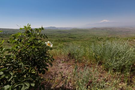 green Armenian valley