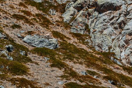 photo and texture of the stone mountains in the daytime Imagens