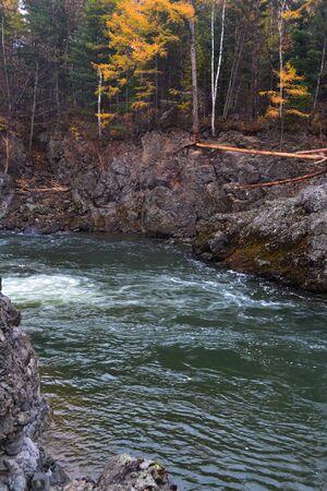 River in the forest in the autumn season. Primorsky Krai Russia Imagens