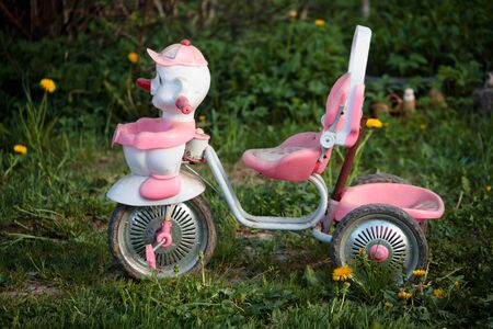 small and childrens tricycle pink in nature