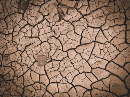 dry cracked brown earth background.