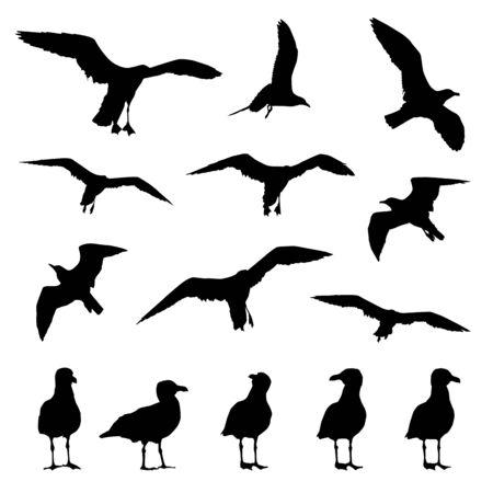 gaviotas vector siluetas sobre un fondo blanco aislado. Ilustración de vector