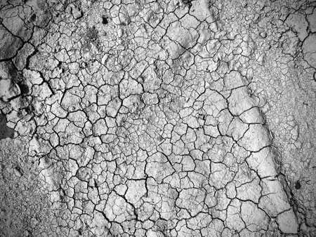 dried cracked soil background top view
