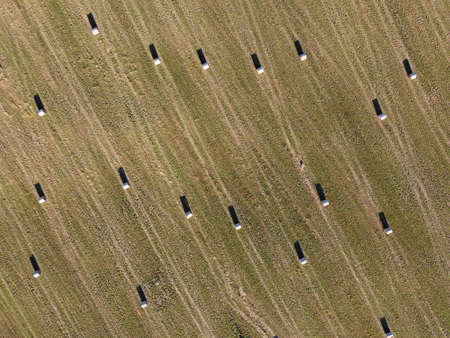 rolls of hay on the field aerial photo