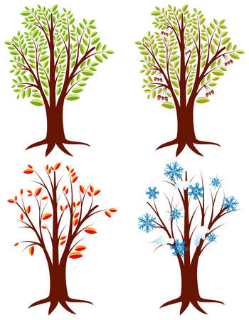Four trees in different seasons, element for design Vector