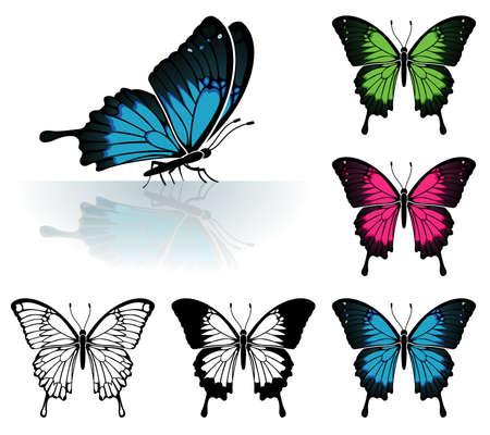 reflejo en espejo: Recopilar muchos Butterfly coloreadas con un reflejo de espejo, elemento de dise�o