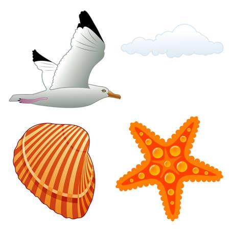 gaviota: Recoger el elemento de verano para el diseño, ilustración  Vectores