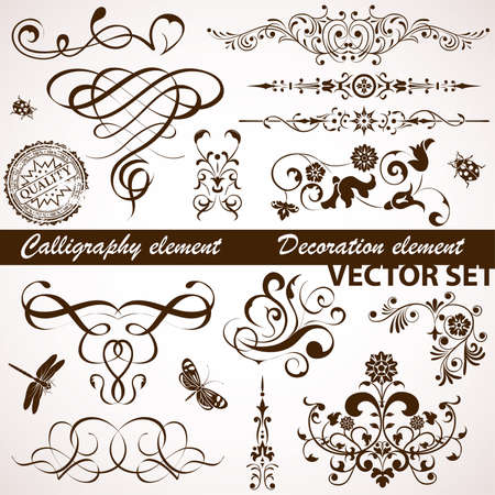 dragonfly art: Collect Calligraphic and Floral element for design, vector illustration