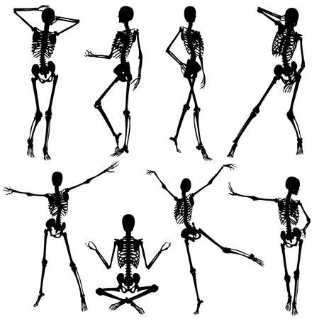 Collect silhouettes skeletons woman in different poses, vector illustration, element for design