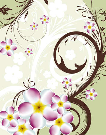Decorative floral background with plumeria, element for design, vector illustration Stock Vector - 9705399