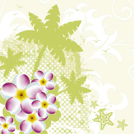 Summer background with palm tree and plumeria, vector illustration Vector