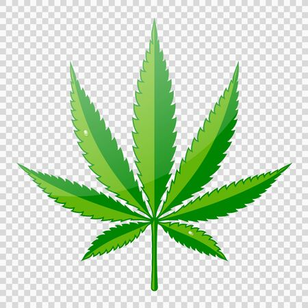 Ð¡annabis or marijuana leaf with dew drops. hemp for logo, advertisement medical services, packaging or printed materials. flat style icon. isolated vector illustration on transparent background