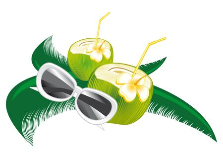 fresh coconut milk up a green palm leaf Stock Vector - 19372143