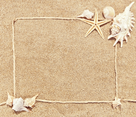 sea shells and starfish with sand as background and a frame Stock Photo - 20212770