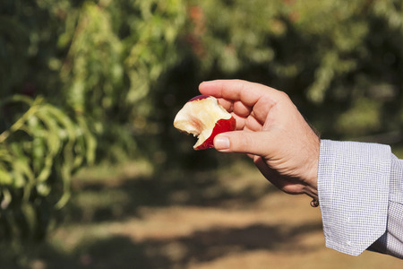 ingest: peach bite and hand on a countryside background Stock Photo