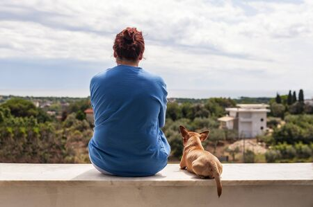 funny boston terrier: woman and dog watching a beautiful landscape Stock Photo