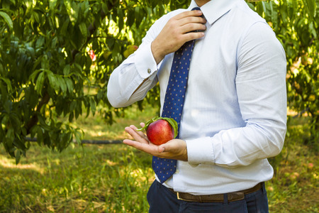 left hand: businessman with peach in his left hand