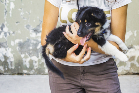 waif: woman holding a black and white mixed race dog