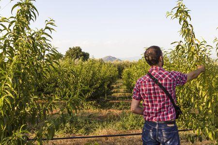 controls: farmer controls plants in his green camp Stock Photo
