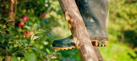 茶色の木製の梯子の上の農家のブーツ