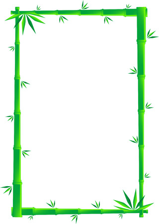 tropical border: Vector illustration of green bamboo canes and leaves, isolated Illustration