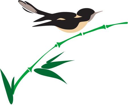 clip art wings: Vector illustration of bird on green bamboo.