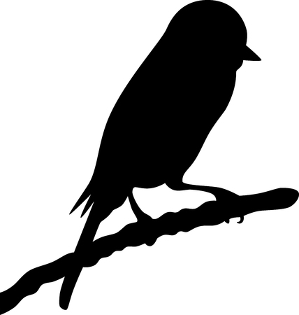 lonely bird: Illustration of a Bird on the branch, isolated